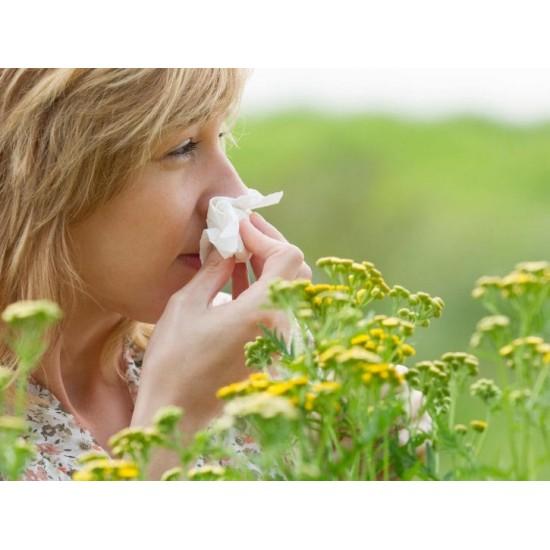 """Allergia da """"Polline &..."""
