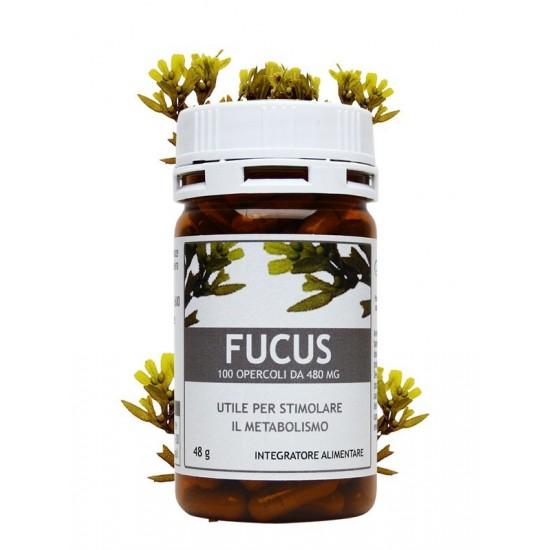 Fucus 100 opercoli