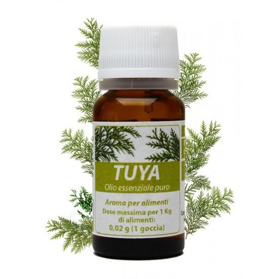 Tuya - Olio Essenziale 10 ml