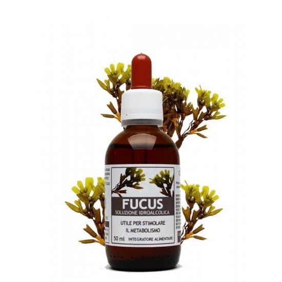Fucus estratto idroalcolico